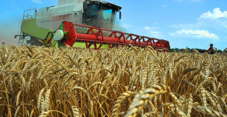 Photo of Climate change may cut Kazakh grain harvest by 37%
